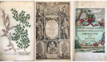 Marian Webb Botanical Collection